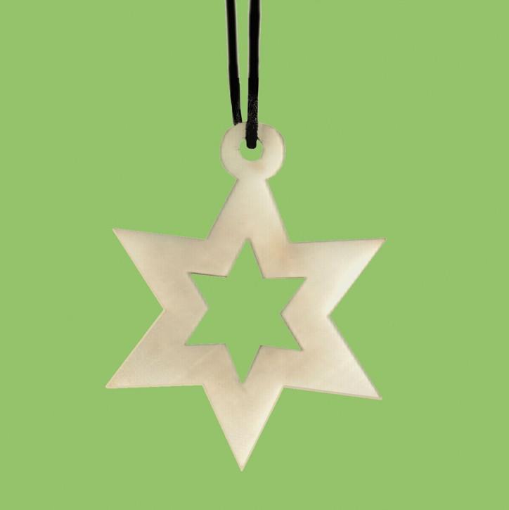 Weihnachtsanhänger Tagua Sternform