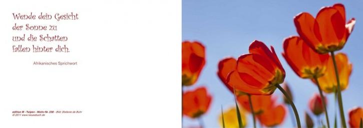 238+ Tulpen mit Innentext