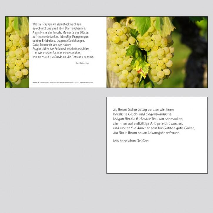 246+  Weintrauben mit Innentext