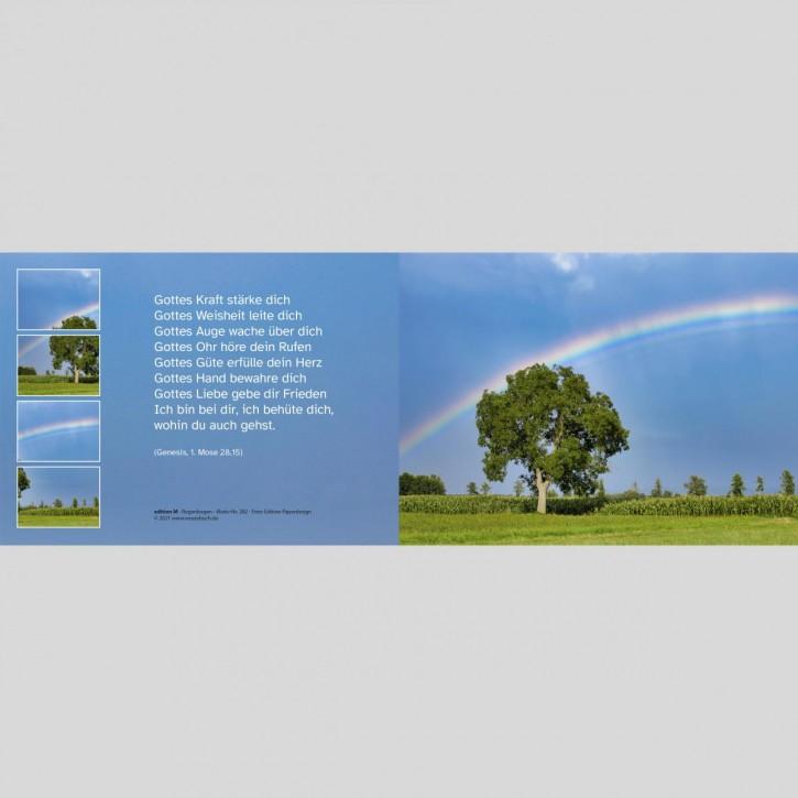 282 Regenbogen