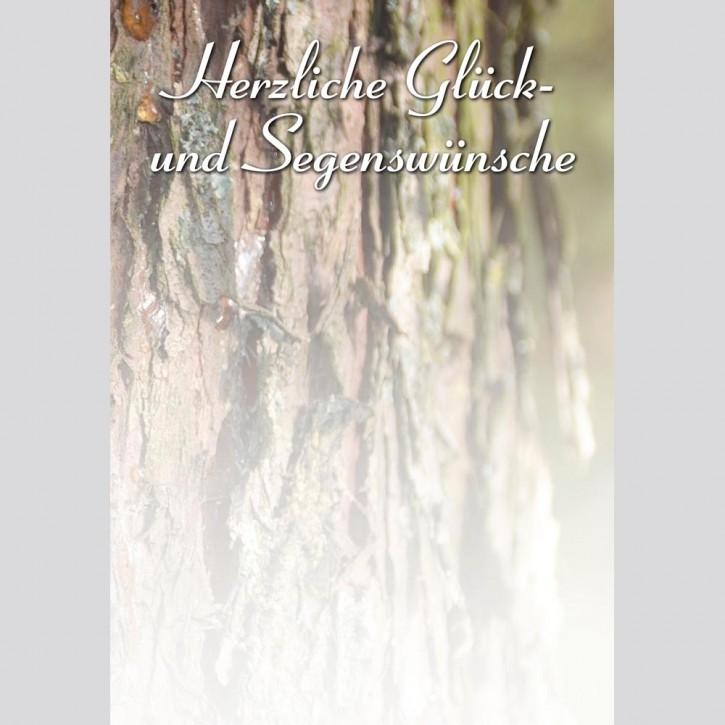 Widmungsblatt Baum